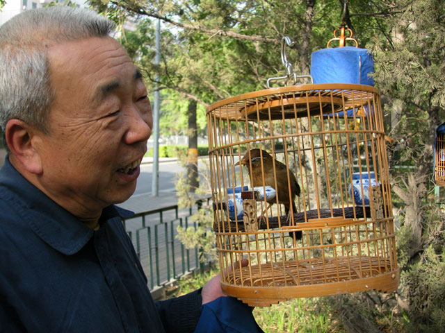 Bird man of Beijing.