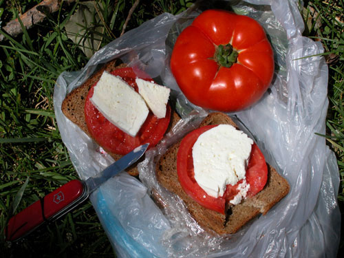 Farmers cheese, tomatos and home made bread.