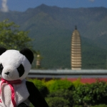 Lucky Goes Tourist at the Three Pagodas