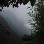 Misty Morning in Shangri-La