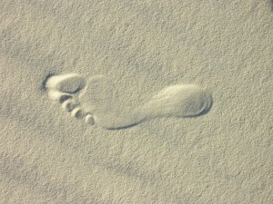 Footprint in the Sand; Just a Thought