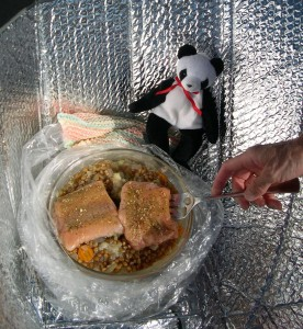 Lucky Helps Cook Dinner With A Solar Cooker