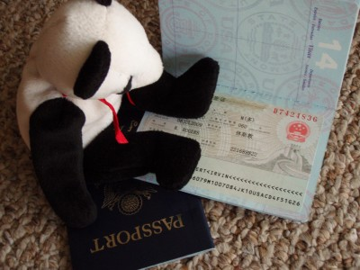 Lucky the rescued Panda looking at a China Visa