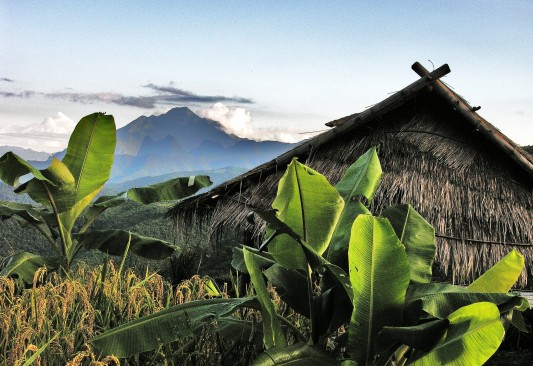 Laos Mountain Scene