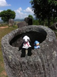 Lucky and Eeyore on The Plain of Jars
