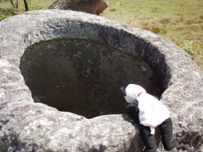 Lucky Visits the Plain of Jars