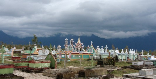 Vietnamese Cemetery, they are everywhere