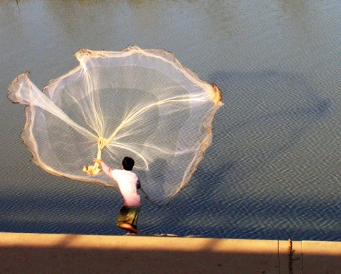 Man throwing a net on a backwater of the Mekong in Cambodia