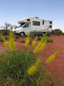The Turtle Chronicles; Motorhome Travel, New Horizons