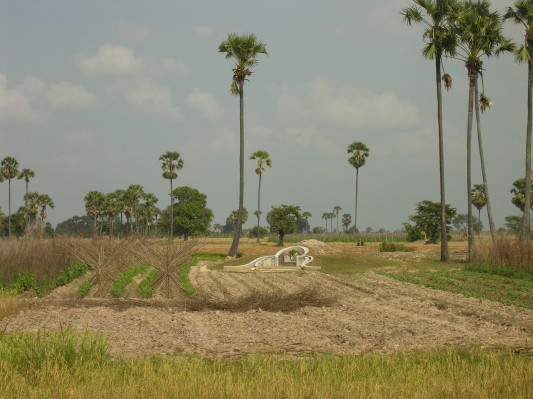 killing fields mass grave