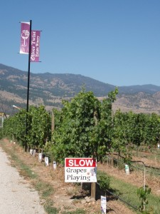 Kettle Valley Rail and Wine Trail