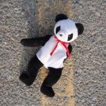 Lucky the Recsue Panda