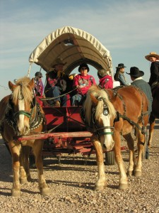 pony wagon
