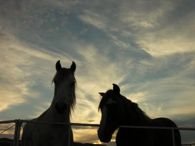 after sunset stillwell