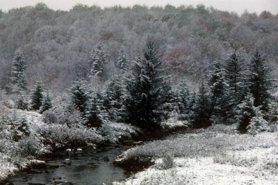 Bob Rogers photo October on Dolly Sods, West Virginia