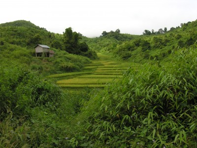 Lao Scene: In the northern mountans of Laos, near here, we saw men walking with  primitive bows and arrows.