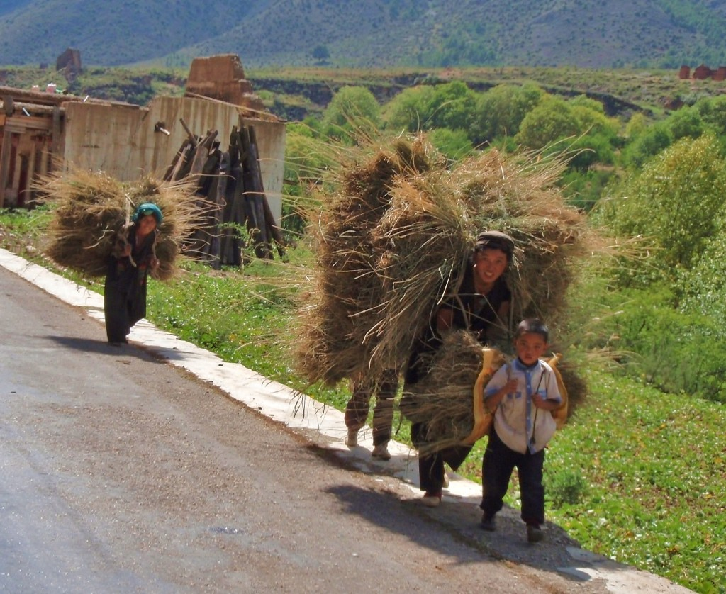 Tibetan women carrying stacks of hay