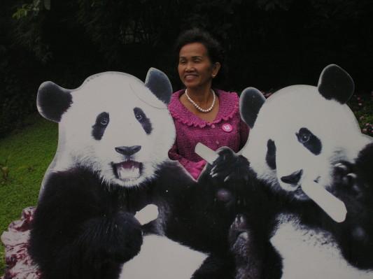 The Chinese love their pandas!