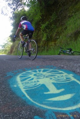 woman riding bike on a steep grade past an image painted on the pavement Road to Paradise near Chico, CA
