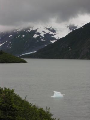 Bergie bit from Portage Glacier