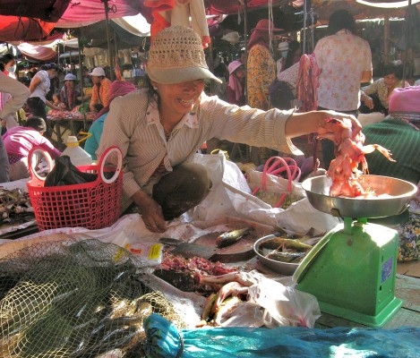Cambodian Market Lady and Frogs