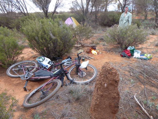 Ever present turmite mounds often prove useful
