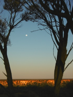 Moonrise from bush camp number 23